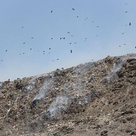 Delhi's Urban Dilemma: Waste